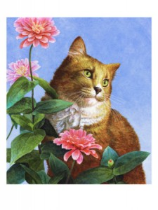 orange cat with zinnias
