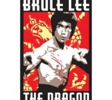 Bruce Lee The Man
