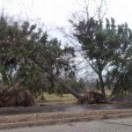 Destruction After the Storm