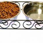 Pet Bowls for Your Precious Fur Babies