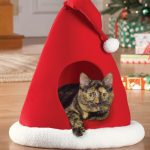 Christmas Products for Your Pets