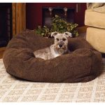 Your Dog and Cat Will Love These Pet Beds!