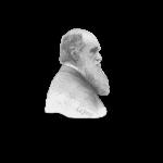 Charles Darwin Shirts & Gifts