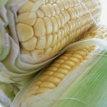 BBQ Corn on the Cob Recipe