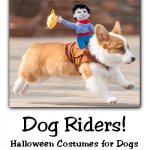 Dog Riders - Halloween Costumes for Dogs