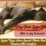 Dog Beds Large Dogs Are Going To Thank You For-Aren't They Worth Their Comforttled Draft