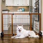 Dog Gates For Doorways