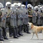 Loukanikos the riot dog