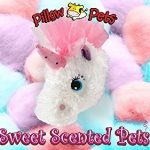 Scented Pillow Pets