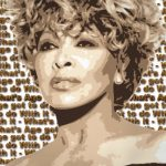 Gifts for Music Lovers: Tina Turner ~ Still Fine and Fabulous!