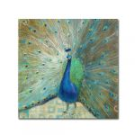 Peacock Home Decor