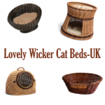 Cat Wicker Beds UK