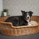 Wicker Dog Basket Beds UK